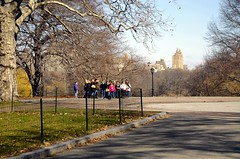 Central Park, New York (faungg) Tags: park city nyc travel vacation urban newyork nature nikon scenery tour view manhattan central visit scene   earlyspring  d90   18200mmvr 0175  faungg