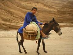 Sakhi Sarwar, Punjab (Ameer Hamza) Tags: pakistan mountains sharif shrine ride centre tomb central donkey data pakistani punjab ra rider bombing punjabi mazar hazrat ppa donkeyride dgkhan muslimshrine sakhisarwar