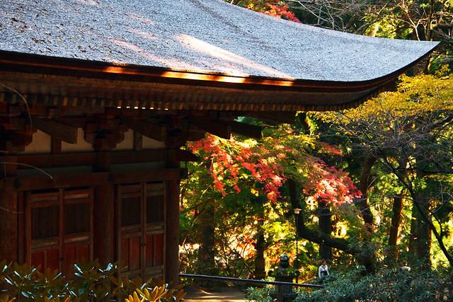 20101119_134708_室生寺_本堂(国宝)