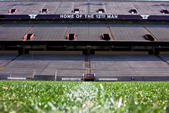 365: 344: Kyle Field from Ground Level (jeanmariehoward) Tags: grass am april 365 aggie turf texasamuniversity kylefield 12thman 50yardline texasaggies canoneos40d fromgroundlevel homeofthe12thman