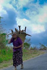 P1050945 (Tarek_Mahmud) Tags: bangladesh bandarban tarek nilgiri trkmhd