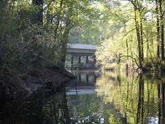 Log Landing Bridge