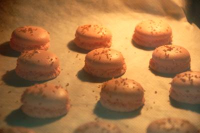 Les Macarons.