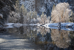 Snow, Trees and the Merced, Yosemite National Park, CA (Sudheendra Kadri) Tags: morning winter snow reflection ice nature still yosemitenationalpark mercedriver sudhi snowcoveredtree sudheendrakadri