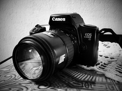 """Canon EOS 1000FN • <a style=""""font-size:0.8em;"""" href=""""http://www.flickr.com/photos/56943675@N04/5624059682/"""" target=""""_blank"""">View on Flickr</a>"""