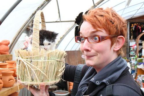 me. KITTEN IN A BASKET. JOY.