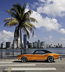 1968 Camaro SS - Miami (DiGitALGoLD) Tags: chevrolet nikon florida miami camaro chevy palmtree 1968 causeway brickell carpics rickenbacker custompaintjob 1968camaro nikond3 digitalgold miamiautomotivephotographer
