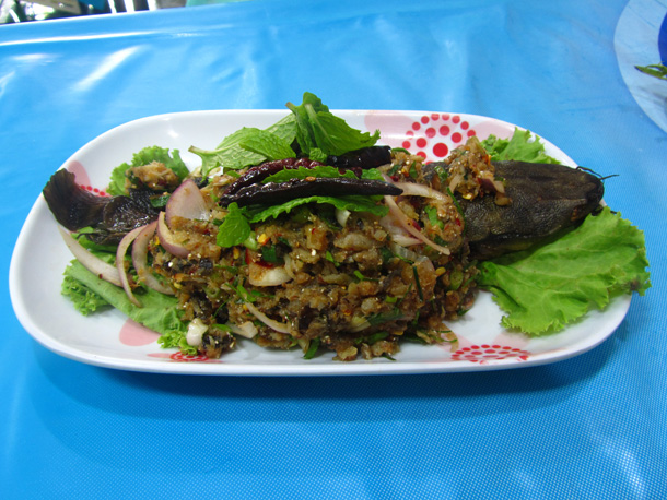 spicy catfish salad (larb pla duk ลาบปลาดุก)