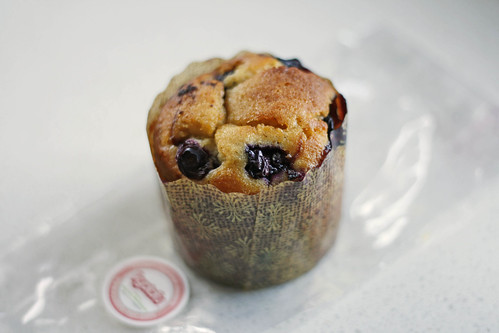 Blueberry Yuzu Cupcake