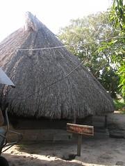 Guyane (4)