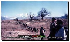 Peshmerge kurdistan  (Kurdistan Photo ) Tags: turkey iran iraq syria campaign kurdistan mahabad the barzani kurd komari    gerilla  peshmerge    krdistan      pesmerge pmerge   freedomanddemocracy  peshmergekurdistan kurdishfighterskurdishstruggleforpeace alanfal