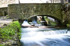 Bridge @ Kearsney Abbey (Simon Didmon) Tags: bridge water abbey 35mm river nikon long exposure filter f18 nd8 d3000 kearsney