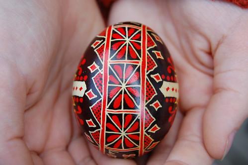 Karens egg floral