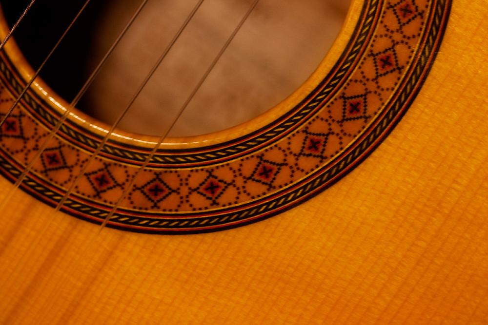 Macro 23/30:  Guitar