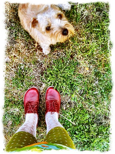 shoe per diem april 19, 2011 - with dog per diem