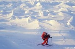 Laurie Dexter (Weber Arctic Expeditions) Tags: ice richard misha weber northpole frostbite arcticocean polarexpedition malakhov wardhuntisland fischerskis polarbridge polartraining capearkticheskiy dimitrishparo shparo