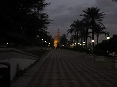 IMG_2278 (sakamotonian) Tags: espaa sevilla andaluca seville andalusia andalusien espagne sville spanien  landalousie  sevllia