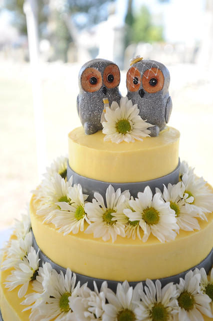 Mr. and Mrs. Owl