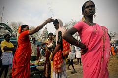 God's Brothel Brides 10 (Leonid Plotkin) Tags: india asia transgender transvestite crossdresser tamilnadu transsexual mela hijra villupuram aravani aravan koovagam