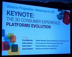 3D panel discussion slide