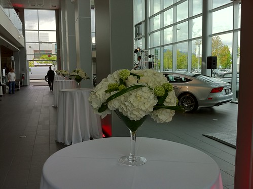 A7 Launch Party