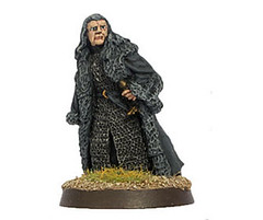 Denethor, Steward of Gondor (LotR Collector) Tags: miniature painted gaming lotr stewart hero figure lordoftherings gw wargame tabletop sbg middleearth whitetower thehobbit minastirith gamesworkshop gondor wargaming legions warofthering wotr denethor strategybattlegame tlokien battlehosts