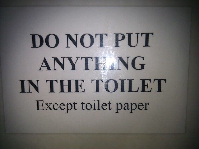 do not put anything in the toilet