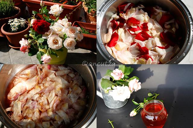 preparazione acqua di rose