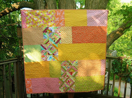 Patchwork Back of the Do. Good Stitches Quilt