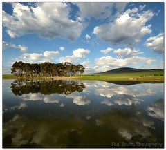 Predictably Reflectable (Panorama Paul) Tags: bravo reflexions cloudreflections nohdr sigmalenses nikfilters farmdam vertorama wwwpaulbruinscoza paulbruinsphotography nikond3100 dunbanville