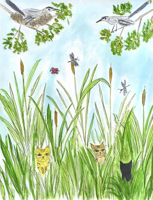 Marsh Cats