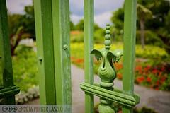 PLW_5591 (Laszlo Perger) Tags: wien vienna sterreich austria blumengarten hirschstetten flowergarden
