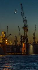 Dock 10 Hafen Hamburg (Robert Benatzky Picture) Tags: dock10 hamburg hafen harbour nacht night lights lichter mond moon germany deutschland reflektionen robertbenatzkypicture