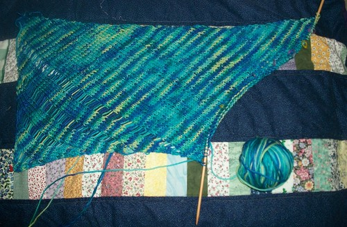 Clapotis scarf