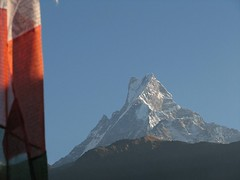 Machhapuchhre Fish Tail (HimalayanTrailFinder) Tags: fishtail poonhill machhapuchhre