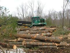 DSCF4684 (M.Bouzakine) Tags: forestry logging valmet skidder timberpro knuckleboomloader 445exl deere648g