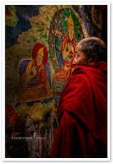 Shangri-La - Songzanlin Monastery (TOONMAN_blchin) Tags: china shangrila yunnan songzanlinmonastery toonman mygearandme