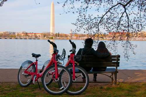Capital Bikeshare and Blossoms Seated