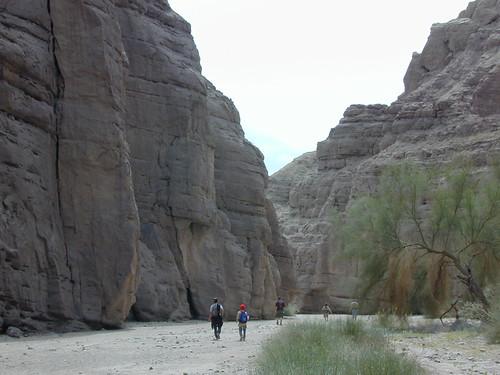 California Deserts Mojave Desert Camping California Desert
