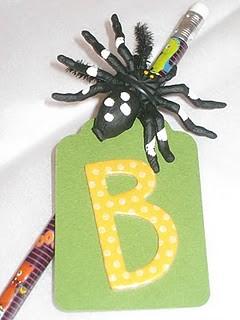pencil spider closeup