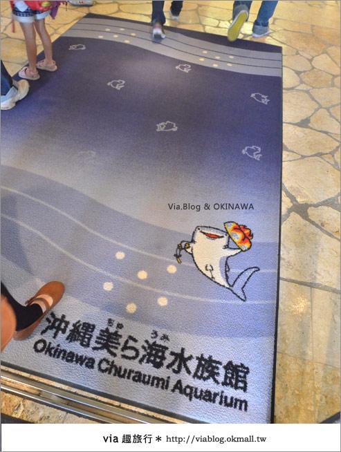【沖繩景點】美麗海水族館~帶你欣賞美麗又浪漫的海底世界!4