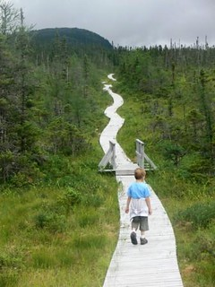 Parc Terra-Nova