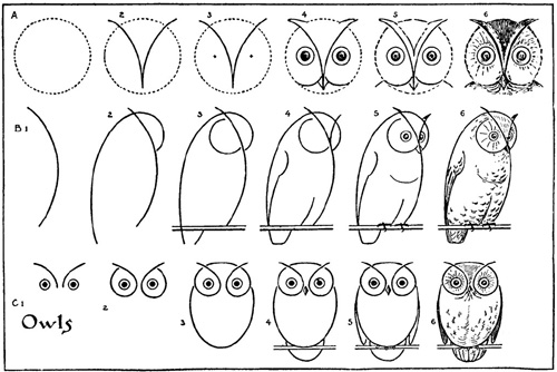 draw an owl1 draw an owl2 - How To Draw Printables