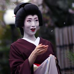 sakura.. sakura... (Marie Eve K.A. (away..)) Tags: portrait woman beautiful japan lady canon eos spring kyoto kiss feminine f14 85mm maiko geiko geisha   sakura kimono elegant springtime planar carlzeiss    geigi umeha
