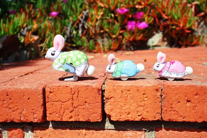 *Bunny crossing*
