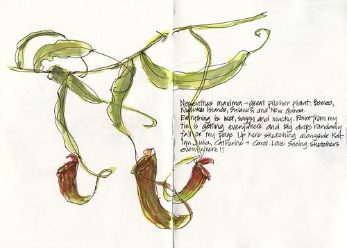 110416 Sketchcrawl 31_08 Sketchabout6_03