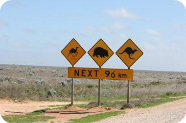 next 96km..