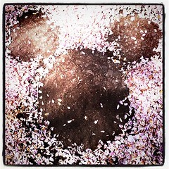 桜の花びらを集めて(今年も)ネズミを描いてみた。雪姫ごっこ。