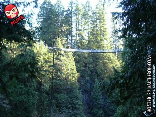 capilano_suspension_bridge (2)