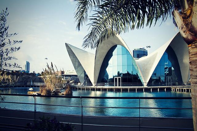 L'Oceanogràfic- Valencia